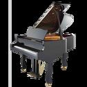 德国卡纳尔专业家用全新三角钢琴