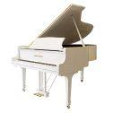 香港玛斯卡尼钢琴GP152型钢琴 家用 初学者三角钢琴专业考级